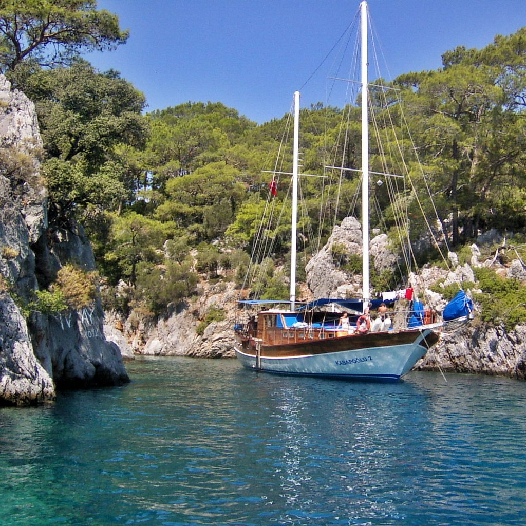 Wake up in an isolated cove